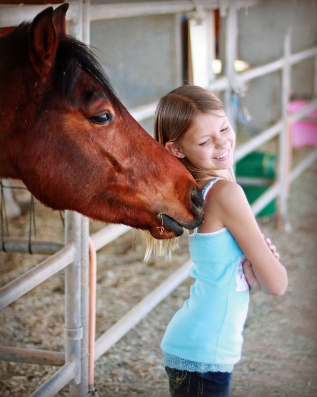 10 terrible facts about horses