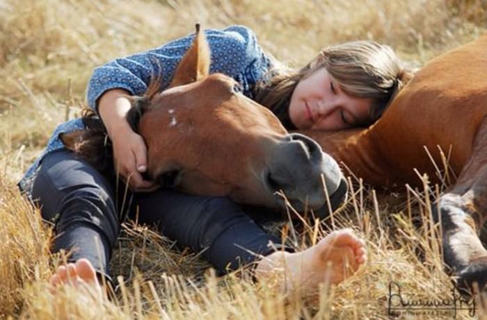 cute horse lady photo