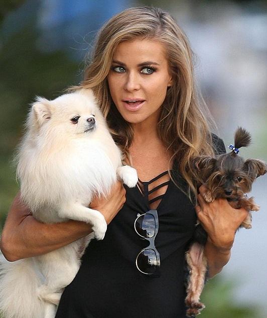 Carmen Electra dogs