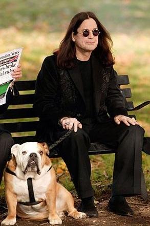 Ozzy Osbourne bulldog