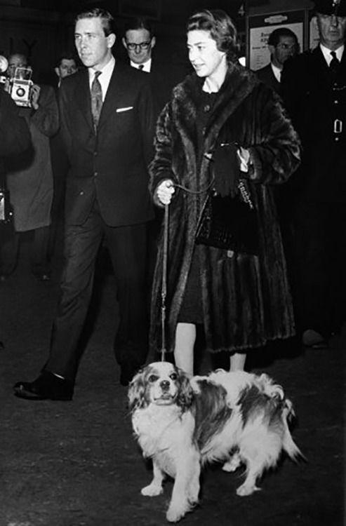 Princess Margaret spaniel