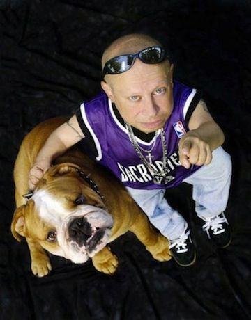 Verne Troyer bulldog