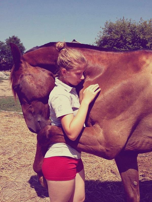 cuddling horse