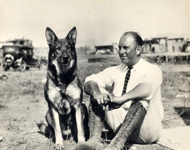 german shepherd dog man photo