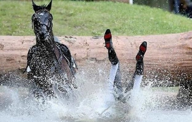 horse falling down funny water
