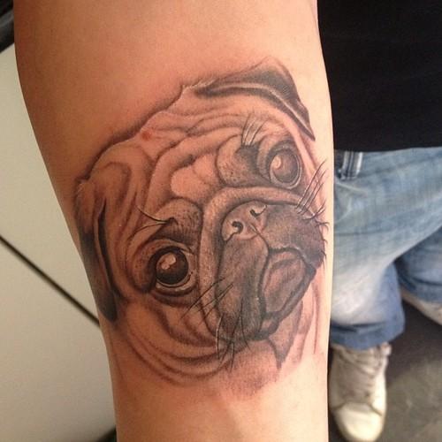 pug face tattoo design