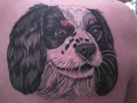 Cavalier King Charles Spaniel tattoo image