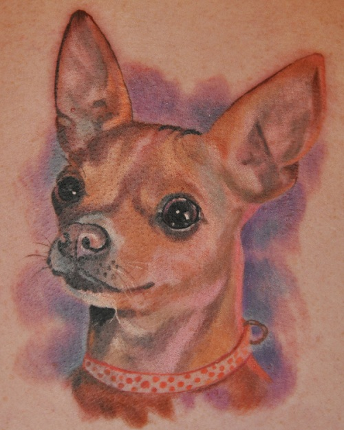 Chihuahua tattoo ideas design3