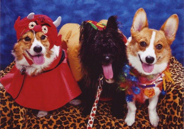 Devil, Clown, hot dog friend