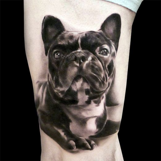 French Bulldog black tattoo