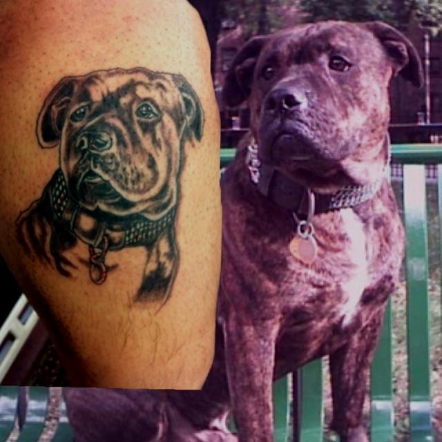 Mastiff Tattoo leg design