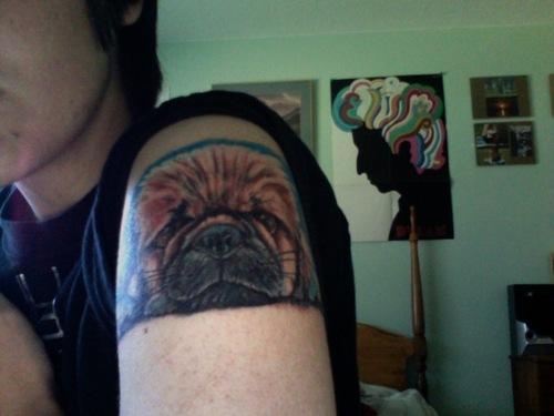 Pekingese Tattoo arm photo