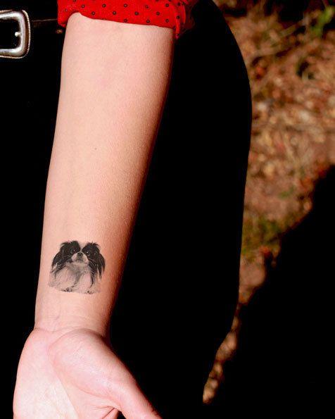 Pekingese Tattoo arm women