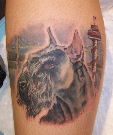 Schnauzer portrait tattoo design