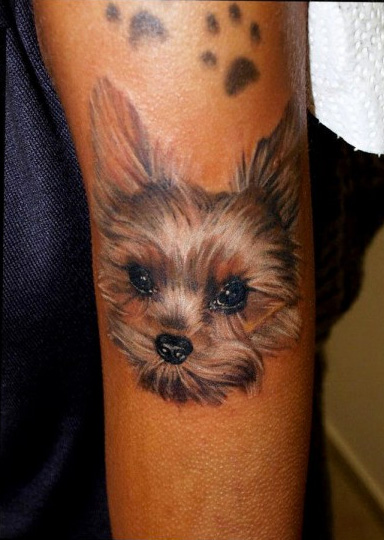 Yorkshire Terrier tattoo idea