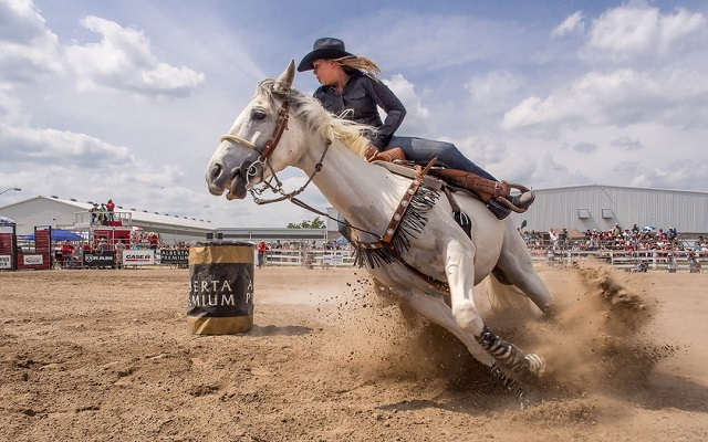 beautiful riding horse lady