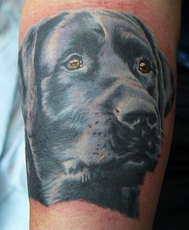 black labrador face tattoo