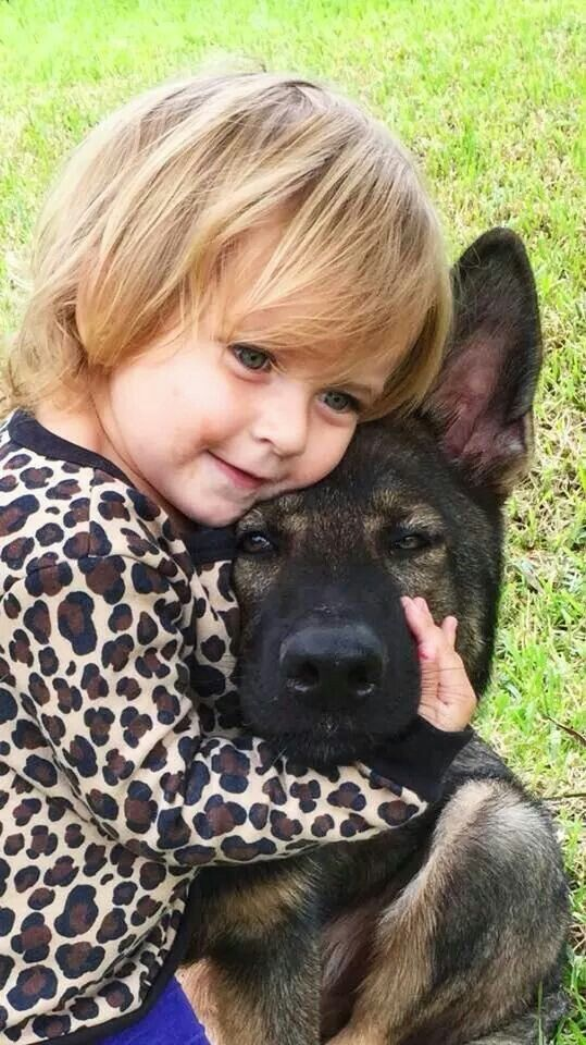 Benefits Of Support Dogs For Children With Disabilities