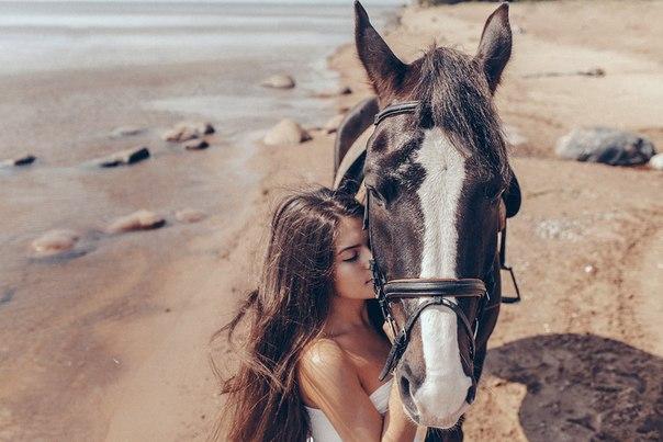 cute lady horse love