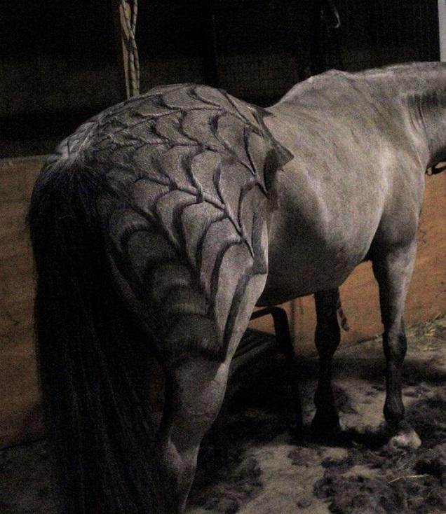 halloween horse costume