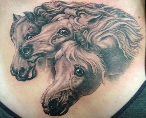 horse tattoo photography