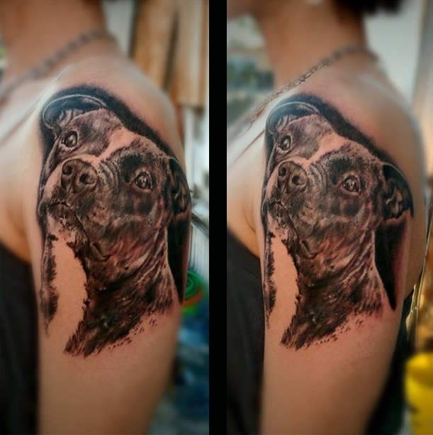 pit bull dog design women tattoo