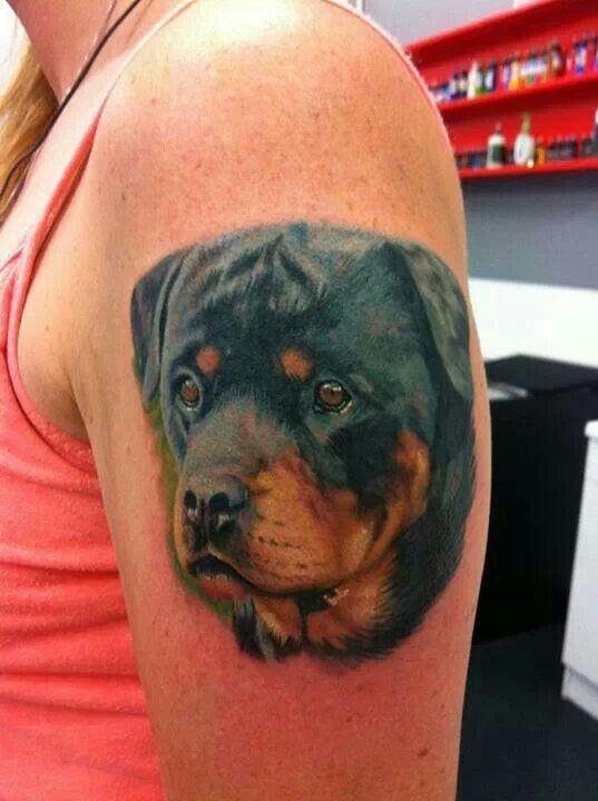 rottweiler tattoo design hands