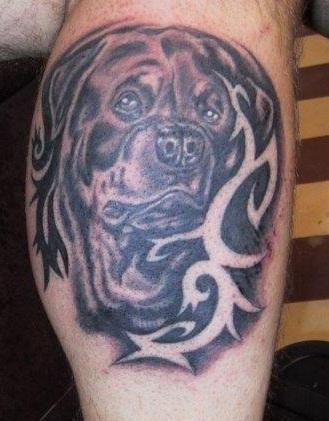 rottweiler tattoo designs for legs
