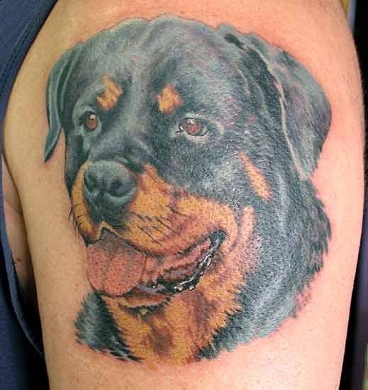 rottweiler tattoos ideas
