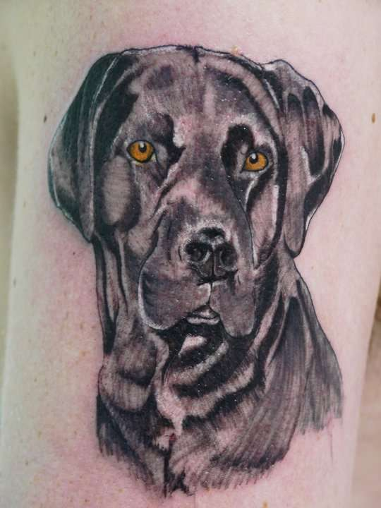 sad dog labrador tattoo design