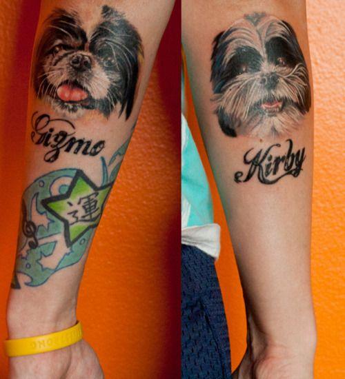 shih tzu color tattoo