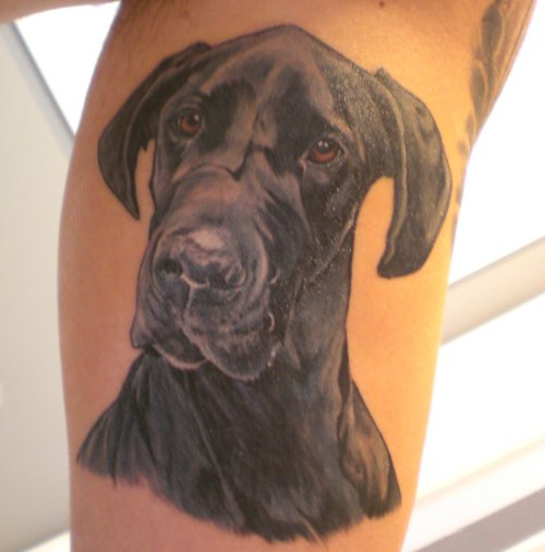 tattoo great dane