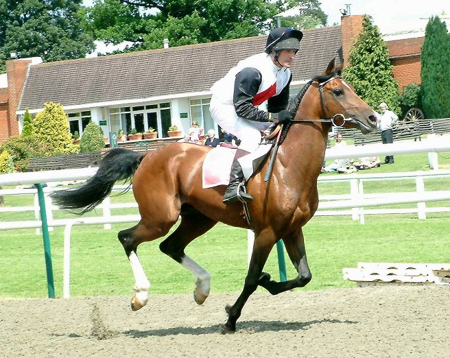 Arab horse racing