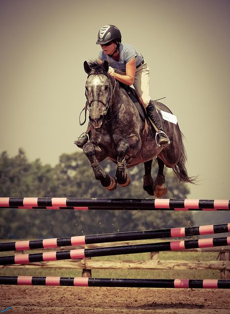 beautiful racing horse rider