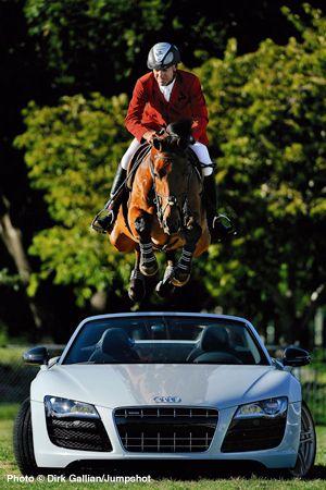 horse jump audi