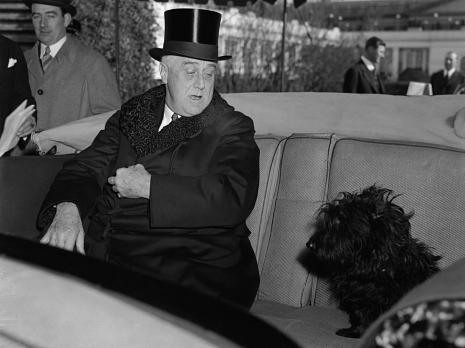 Franklin Roosevelt dog Fala
