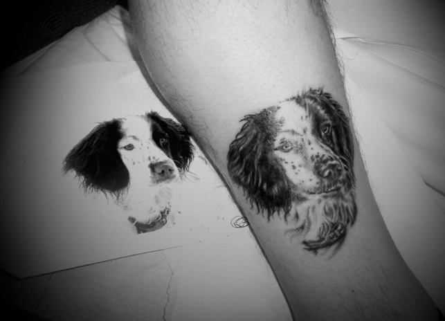art design tattoo springer spaniel