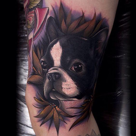 boston terrier tattoo ideas