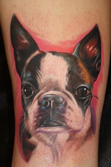 boston terrier tattoo photo