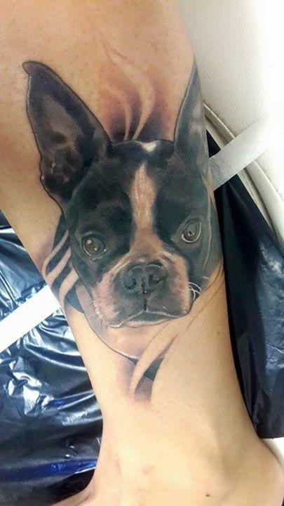 boston terrier tattoo picture