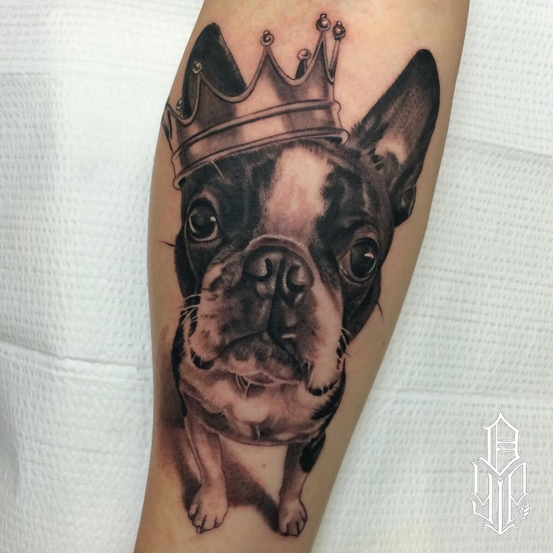 boston terrier tattoo portrait