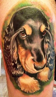 color tattoo springer spaniel