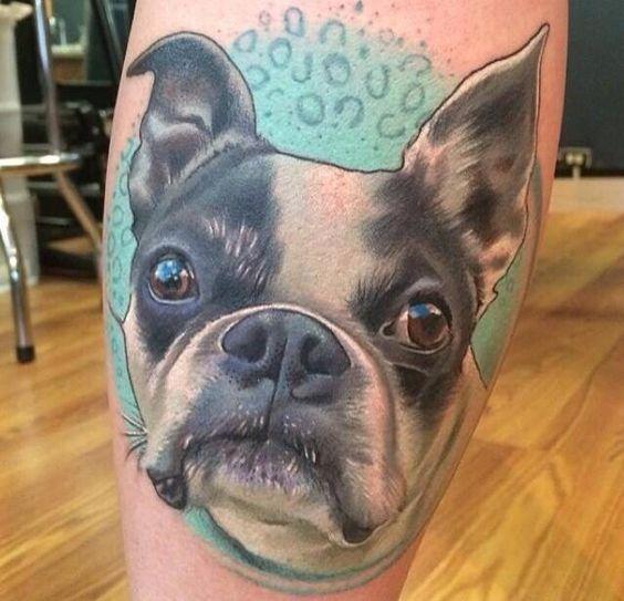 tattoo boston terrier