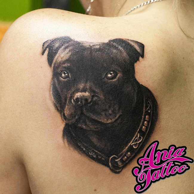 Staffordshire Bull Terrier back tattoo
