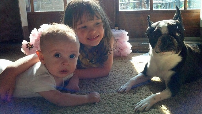 Pet Dogs and Children's Health