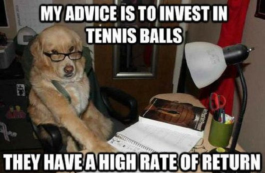 golden retriever meme balls