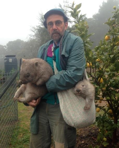 man with animals