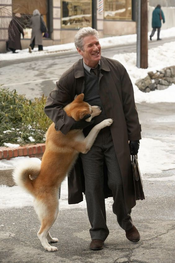akita inu dog celebrity hug
