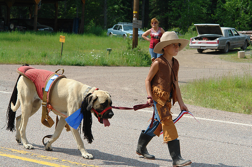cowboy-pony-mastiff-halloween