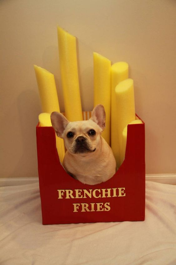 frenchie-fries-french-bulldog